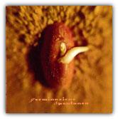 "Artisti vari ""Germinazione spontanea"" (1997 - AMF)"
